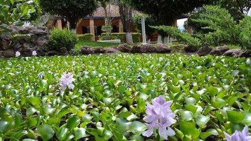Chácara Residencial À Venda, Estância Santa Maria Do Portão, Atibaia - Ch0910. - Ch0910