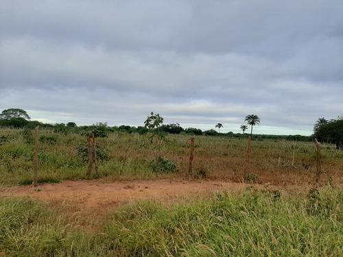 Imagem 1 de 10 de Propiedade Para Criar E Para Agricultura