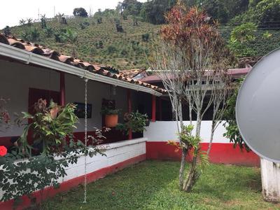 Finca Agroindustrial En Venta En Andes