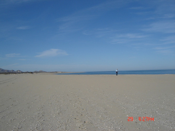 Ensenada B.c.playas Puntadiggs,terreno 200htcs,uso Turistico