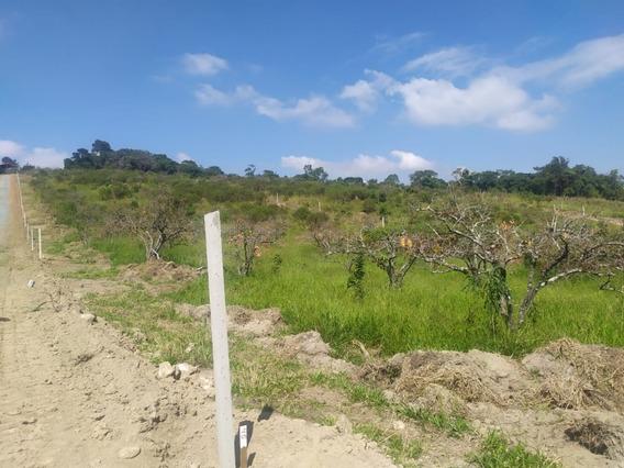 Venha Conferir Nossos Terrenos E Nossos Ótimos Preços Pb