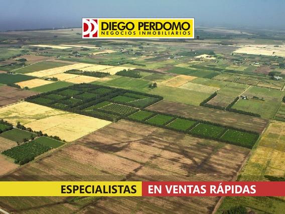 Campo En Venta 78 Has, Kiyú