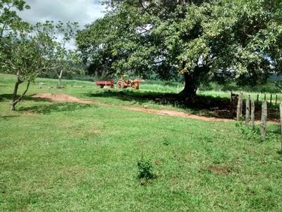 Fazenda A Venda Em Sidrôlandia - Ms (pecuária E Soja) - 739