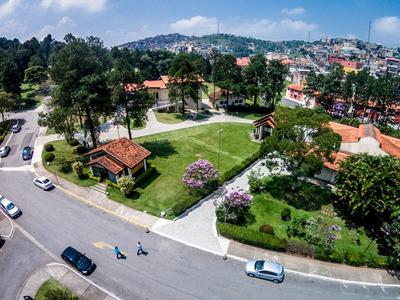 Jazigo Cemitério Da Colina