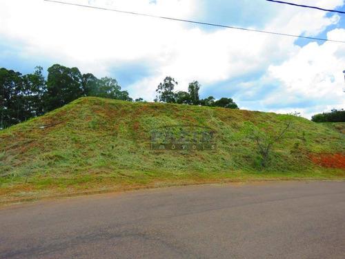 Terreno À Venda, 834 M² - Condomínio Residencial Terras De Santa Tereza - Vinhedo/sp - Te2068