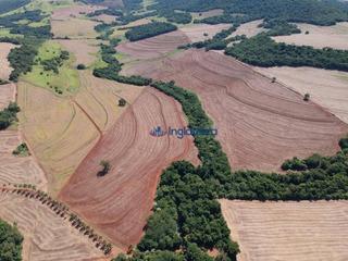 Sitio À Venda, 18.7 Alqueires R$ 3.000,000,00 - Rodovia - Sertanópolis/pr - Fa0005