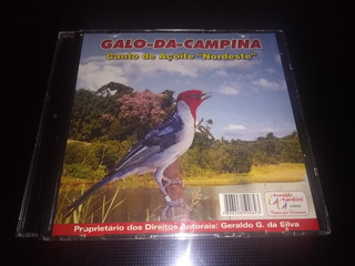 DO MP3 BAIXAR CAMPINA CANTO GALO DE