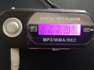 Digital Mp3 Player Usado Para Escuchar Musica En Pc