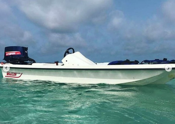 Bote Lancha Boston Whaler 14pies Cod001