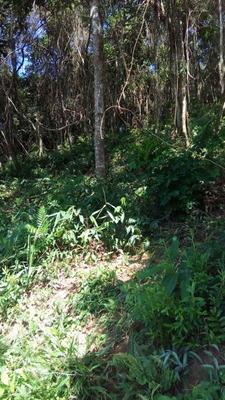 Terreno Para Venda No Jardim Araci Em Mogi Das Cruzes - Sp - 1559