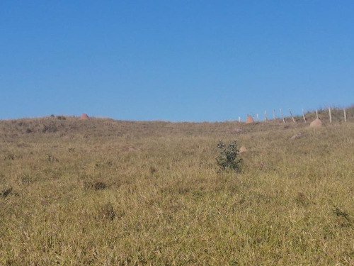 16- Terrenos De 5000m Com Boa Topografia  A Venda Em Jacareí