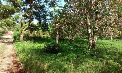 Se Vende Terreno En Bocas Del Toro 18-6814 **hh**