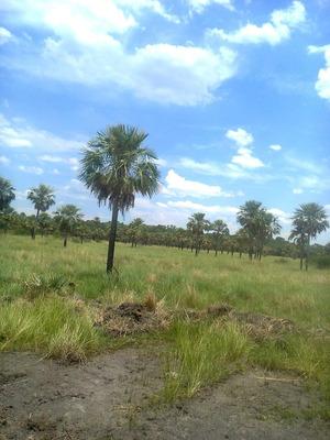 Campo Mixto En Formosa