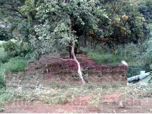 Terreno Para Venda, 207.48m² - 30156