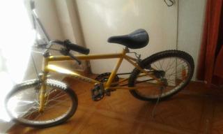 Bicicleta Erion Rodado 20 Para Niños. Una Velocidad.