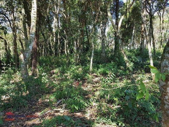 Terreno Residencial À Venda, Jardim Floresta, Vargem Grande Paulista. - Te0094