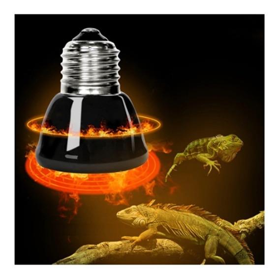 Lâmpada De Aquecimento 50w Répteis Chocadeira + Termostato