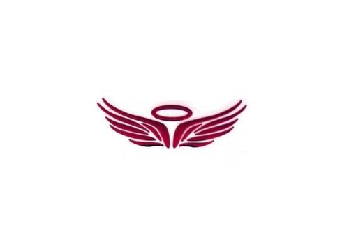 Sticker Emblema Angel Para Marca De Carro Unidad