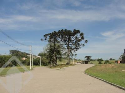 Terreno - Centro - Ref: 107968 - V-107968