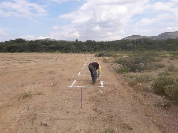 Terreno Zona Industrial El Tocuyo