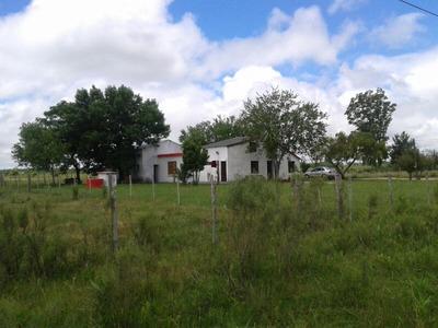 Chacra 4.5 Hs Con Hermosa Casa Y Galpón 5 Km De Canelones
