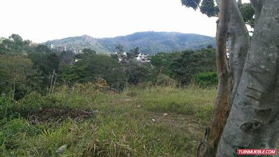 Terrenos En Venta Mg Mls #17-15497 La Trinidad