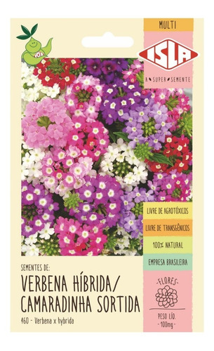 Sementes De Verbena Híbrida Camaradinha Sortida Flor