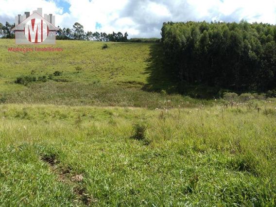 Terreno Com Água, Nascente, Ótima Topografia E Linda Vista À Venda, 2600 M² Por R$ 110.000 - Zona Rural - Pedra Bela/sp - Te0212