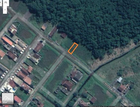 Terreno 357m2 Cibratel 2 Em Itanhaem