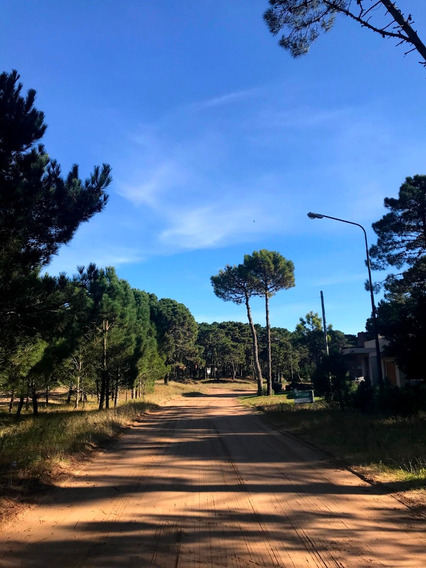 Lote Y Terreno Pinamar Zona Alamos Dueño Vende