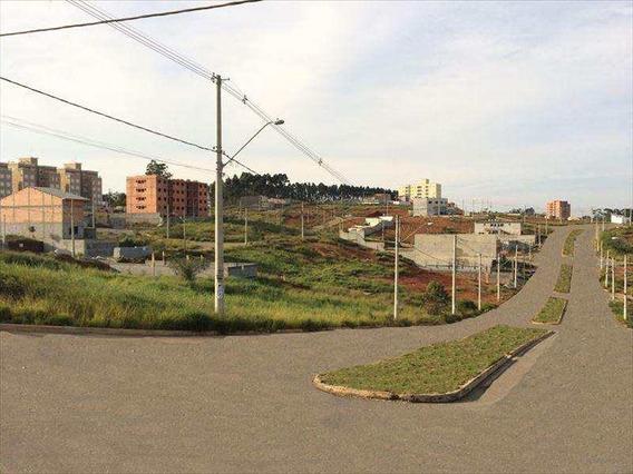 Terreno, Vila Carmela I, Guarulhos - V238
