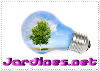 Paisajismo Diseño Jardinería 1 Hora + Multimedia