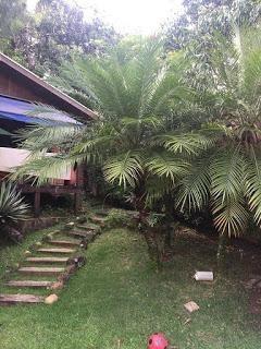 Jardim Novo Mundo-magnífica Casa Com 04 Suítes,excelente Localização,oportunidade - Ca0554