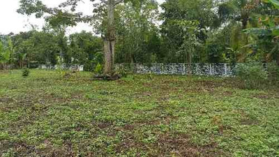 Venta De Terreno En Guineo 1ra Sección, Villahermosa, Tabasco