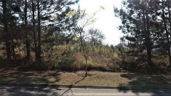 Belo Terreno 800m² Leve Aclive Condomínio Ibirapitanga Sta. Isabel - Te0021