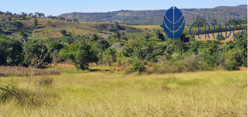 Imagem 1 de 15 de Chácara À Venda Em Alexânia-go - Ch4232335