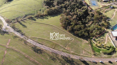 Terreno À Venda, 10088 M² Por R$ 6.000.000 - Condomínio Fazenda Boa Vista - Porto Feliz/sp - Te0852