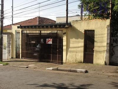 Terreno Comercial À Venda, Parque Peruche, São Paulo. - Te0073