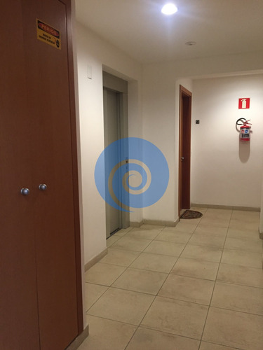 Apartamento Na Vila Ipojuca - São Paulo, Sp - 2670