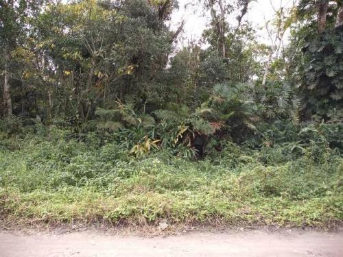 Imagem 1 de 3 de Terreno Chácara Itanhaém Gaivota Lado Serra 1km Da Rodovia.
