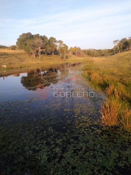Chacra Minas- Ref: 26363