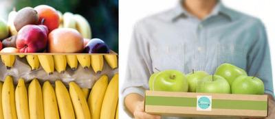 Entrega Programada De Frutas Y Cereales A Empresas