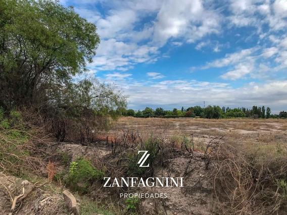 Terreno En Zona Industrial 3 Ha - Guaymallen