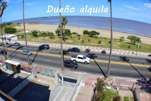 Dueño Alquila Apartamento Frente A Playa Buceo Pocitos 2 Hab