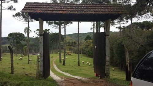 Chácara A Venda No Bairro Centro Em Mandirituba - Pr.  - 5066-1