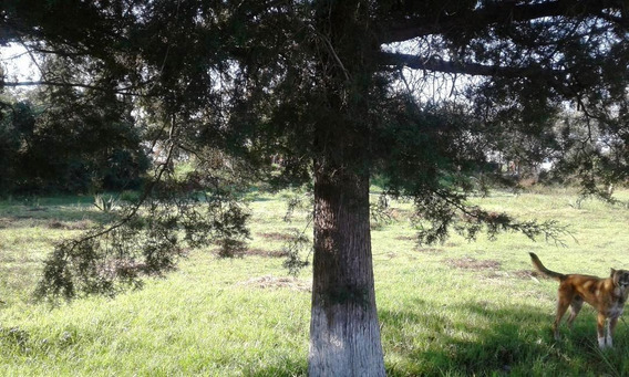 Terreno Ideal Para Desarrollo Urbano En Jilotepec