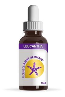 Florais Saint Germain - Leucantha 10ml