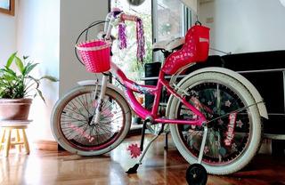 Bicicleta Raleigh Jazzy Niñarodado 24 Con Canasta Y Timbre L