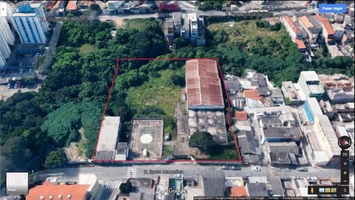 Imagem 1 de 1 de Terreno Residencial À Venda, Vila Carmosina, São Paulo. - Te0204
