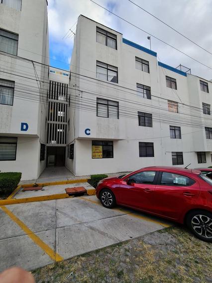 Departamento Amueblado En Renta Colonia Las Animas
